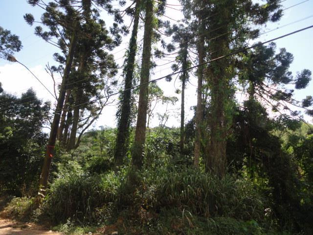 Área comercial à Venda - Terras de São Felipe (Caucaia do Alto)