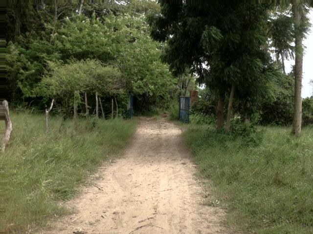 Chácara 14 Ha em Pituaçu, Conde.
