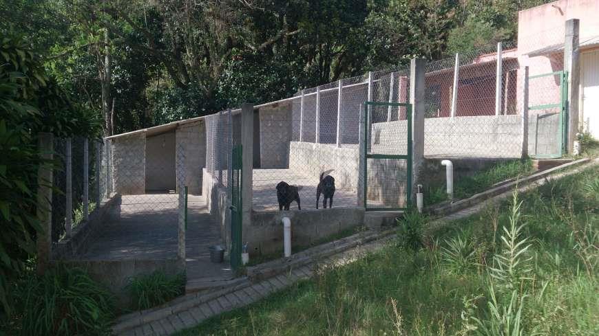 Casa 5 Dorm, Alpes de Caieiras, Caieiras (CA0052) - Foto 6
