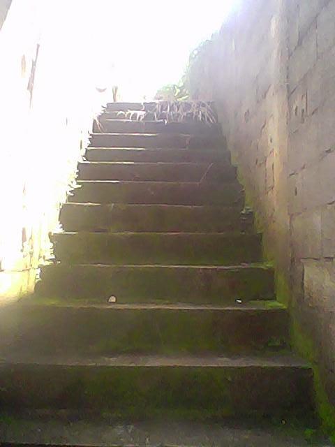 Terreno, Recreio São Jorge, Guarulhos (TE0316) - Foto 4