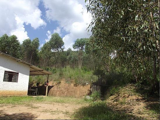 Soute Imóveis - Chácara 3 Dorm, Marmelos (CH0133) - Foto 9
