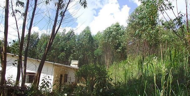 Chácara 3 Dorm, Ã�gua Azul, Guarulhos (CH0137) - Foto 2