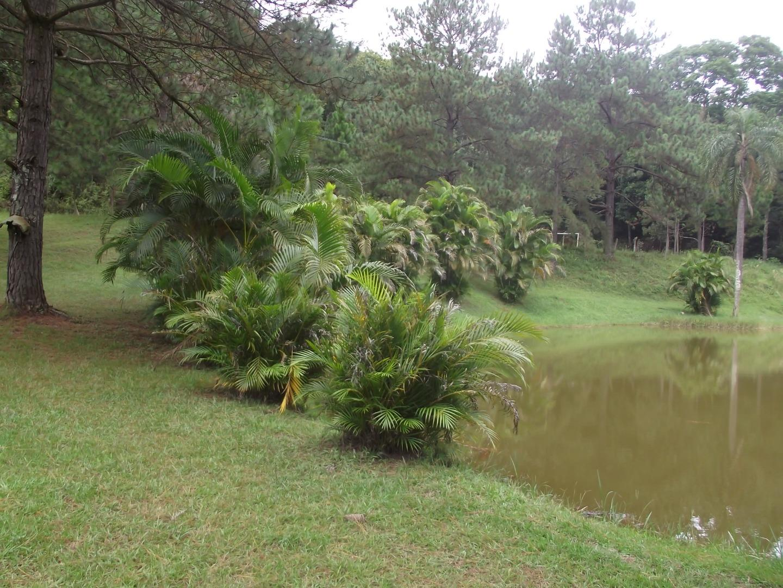 Chácara, Jardim São João, Guarulhos (CH0129) - Foto 14