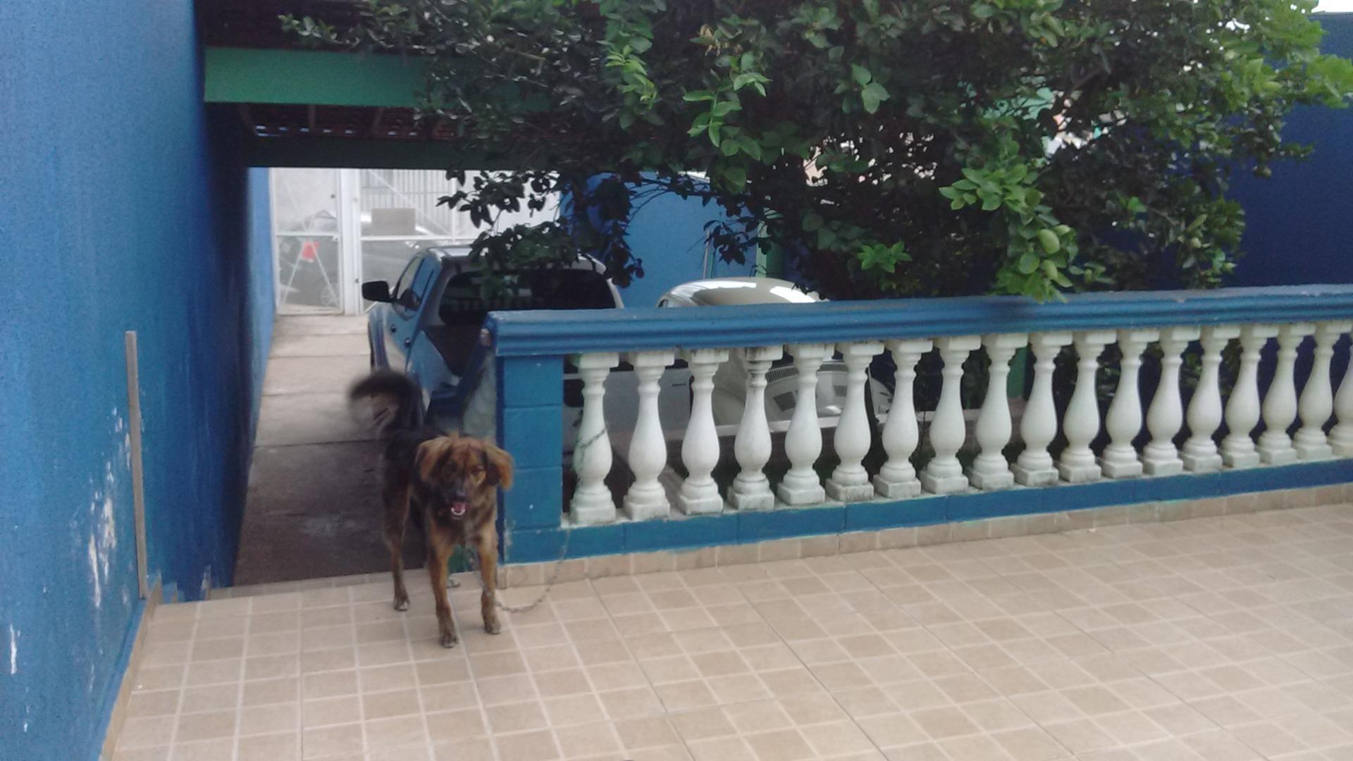 Casa 3 Dorm, Vila Nova Aparecida, Mogi das Cruzes (CA0829) - Foto 11