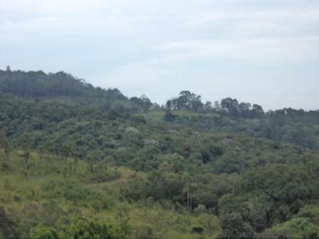 Terreno, Cantareira, Mairipora (AR0037) - Foto 7