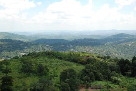 Terreno, Cantareira, Mairipora (AR0037) - Foto 3