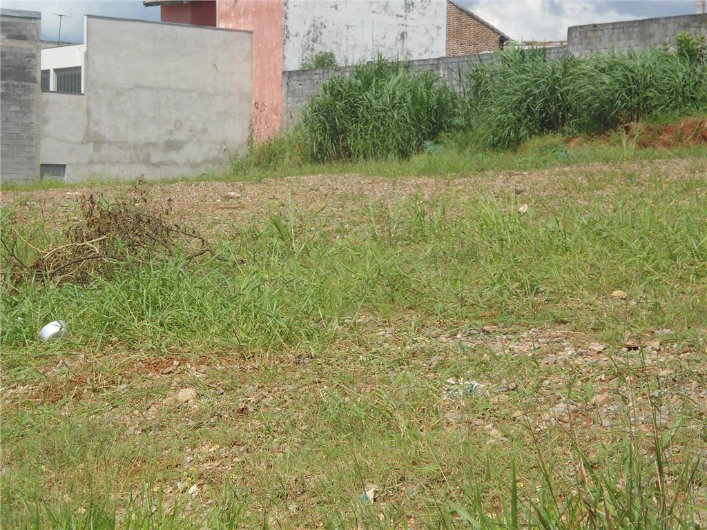Terreno, Vila Nova Bonsucesso, Guarulhos (AR0059) - Foto 12
