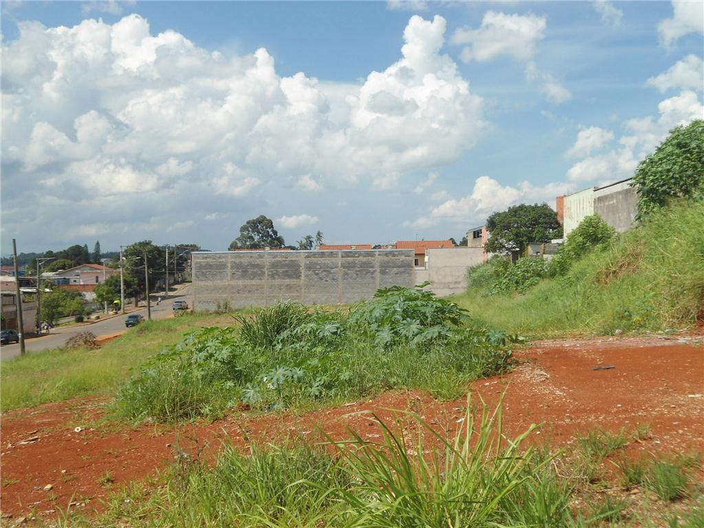 Terreno, Vila Nova Bonsucesso, Guarulhos (AR0059) - Foto 4
