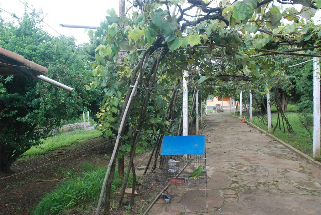 Terreno, Vila Nova Bonsucesso, Guarulhos (TE0138) - Foto 13