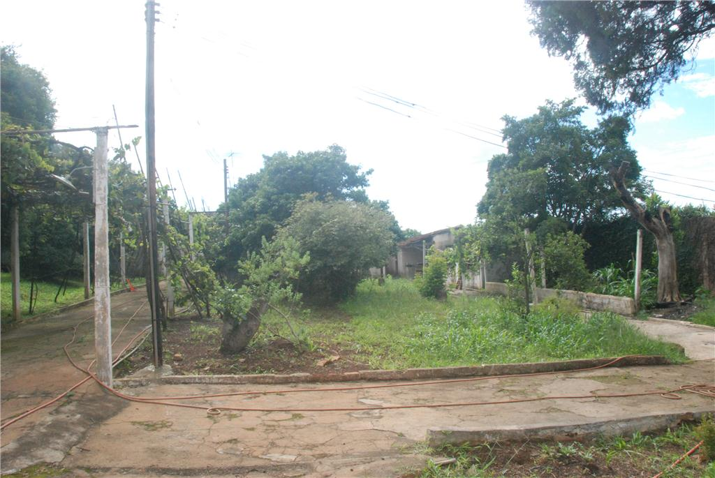 Terreno, Vila Nova Bonsucesso, Guarulhos (TE0138) - Foto 7