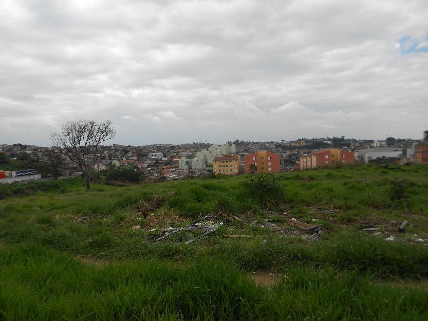 Terreno, Cidade Parque Brasília, Guarulhos (TE0268) - Foto 3