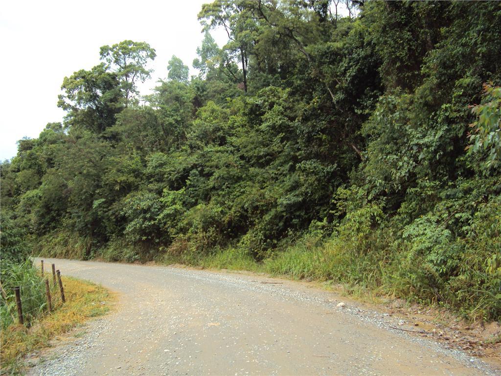 Terreno, Zona Rural, Aracariguama (AR0198) - Foto 5