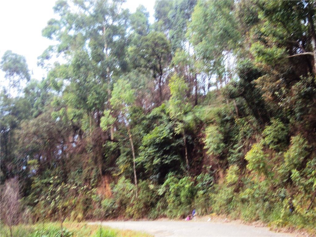 Terreno, Zona Rural, Aracariguama (AR0198) - Foto 2