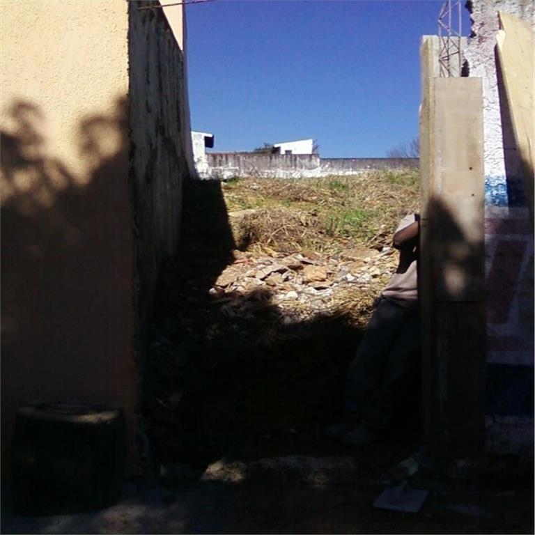Terreno, Vila Rosália, Guarulhos (TE0303) - Foto 3