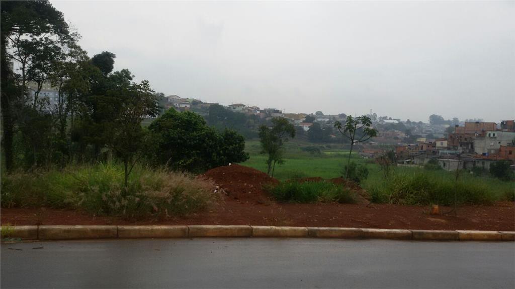 Terreno, Vila Carmela I, Guarulhos (TE0315) - Foto 2
