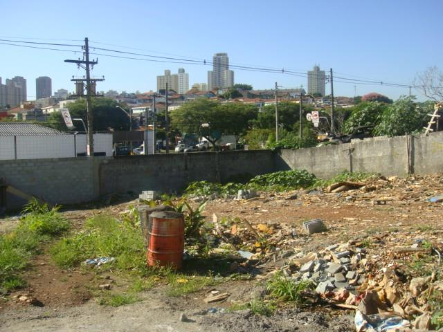 Terreno, Saúde, São Paulo (TE0306) - Foto 3