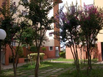 Apto 2 Dorm, Parque Residencial Eloy Chaves, Jundiaí (AP0848) - Foto 5