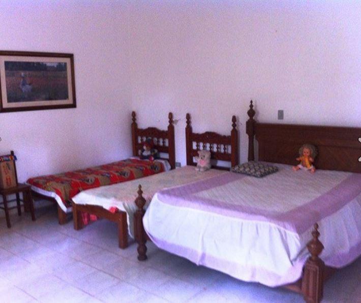 Chácara de 3 dormitórios à venda em Jarinu, Jarinu - SP