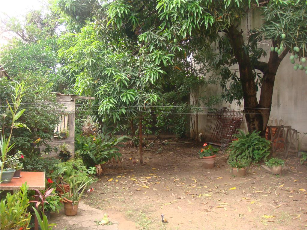Terreno em Bosque, Campinas - SP
