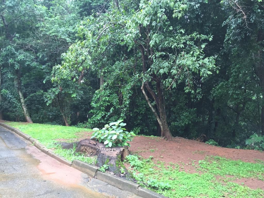 Terreno residencial à venda, Parque São Quirino, Campinas.