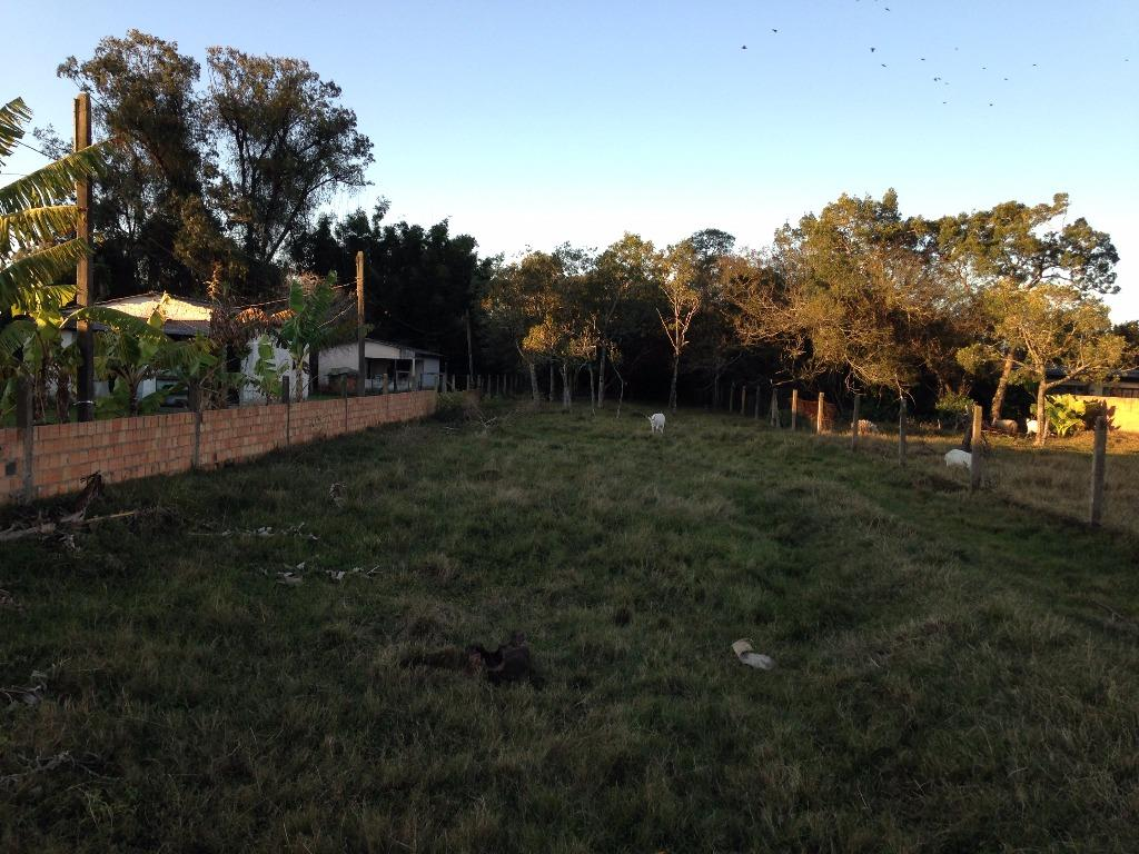 Terreno, Ponta Grossa, Porto Alegre (TE0353) - Foto 3