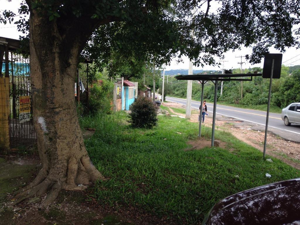 Teresa Helena Assessoria Imobiliária - Galpão - Foto 2