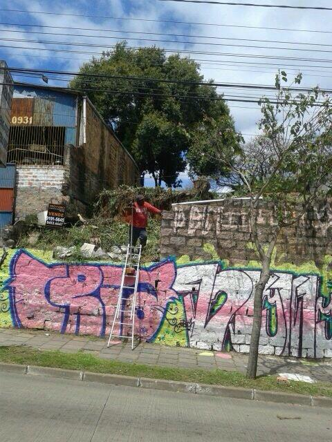 Terreno, Glória, Porto Alegre (TE0320) - Foto 2