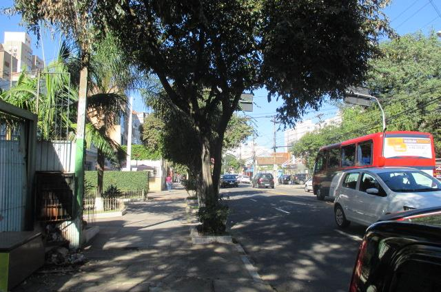 Terreno, Farroupilha, Porto Alegre (TE0331) - Foto 9
