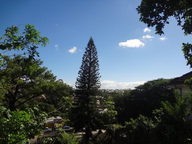 Terreno, Azenha, Porto Alegre (TE0265) - Foto 6
