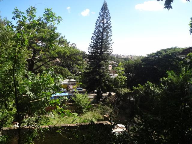 Terreno, Azenha, Porto Alegre (TE0265) - Foto 5