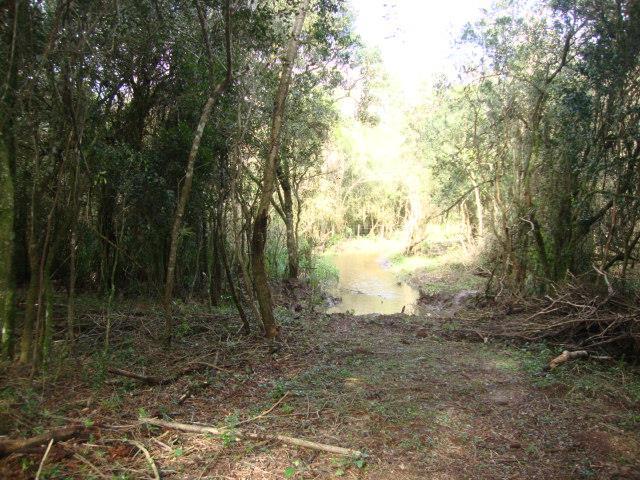 Terreno, Espigão, Viamão (AR0003) - Foto 7