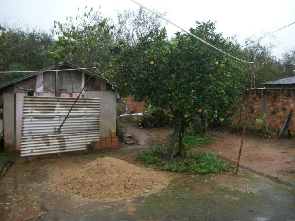 Terreno, Ponta Grossa, Porto Alegre (TE0334) - Foto 5