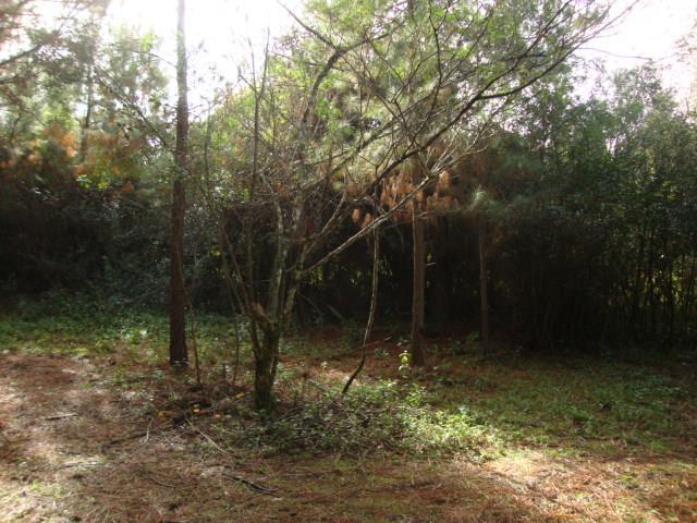 Terreno, Espigão, Viamão (AR0003) - Foto 3
