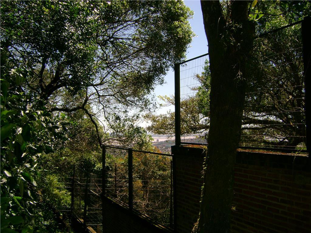Terreno, Teresópolis, Porto Alegre (TE0086) - Foto 5