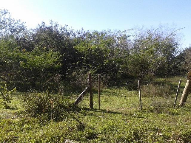 Terreno, Santo Onofre, Viamão (TE0281)