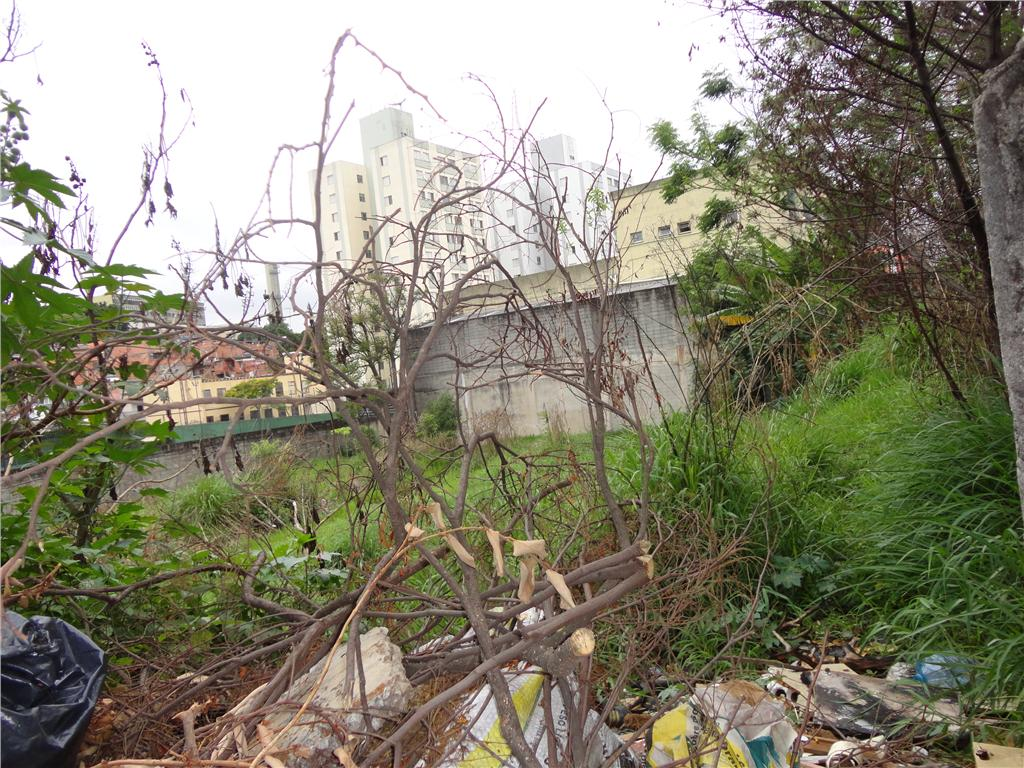 Terreno em Butantã, São Paulo - SP