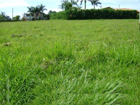 Residencial Jardim Vale do Lago - Foto 3