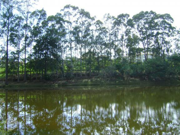 Residencial Jardim Vale do Lago - Foto 4