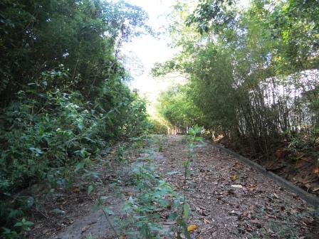 Área à venda em Parque Jatibaia (Sousas), Campinas - SP