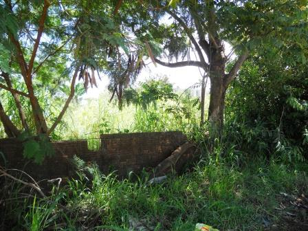 Terreno à venda em Mansões Santo Antônio, Campinas - SP
