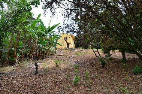 Terreno à venda em Joapiranga Ii, Valinhos - SP