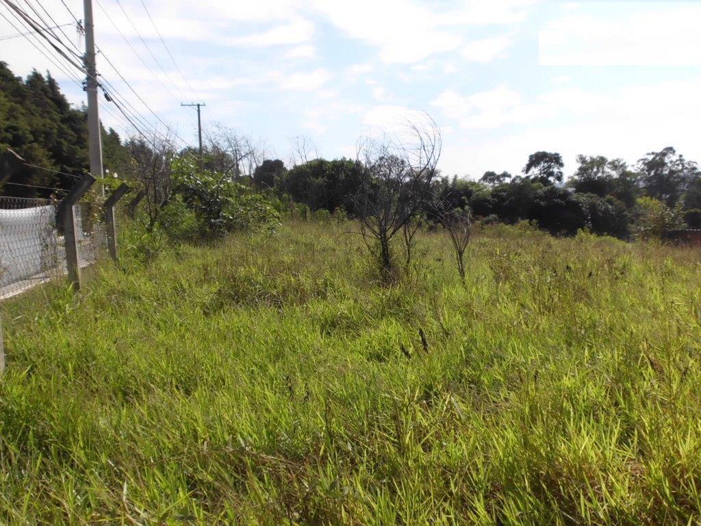 Terreno à venda em Pinheirinho, Vinhedo - SP