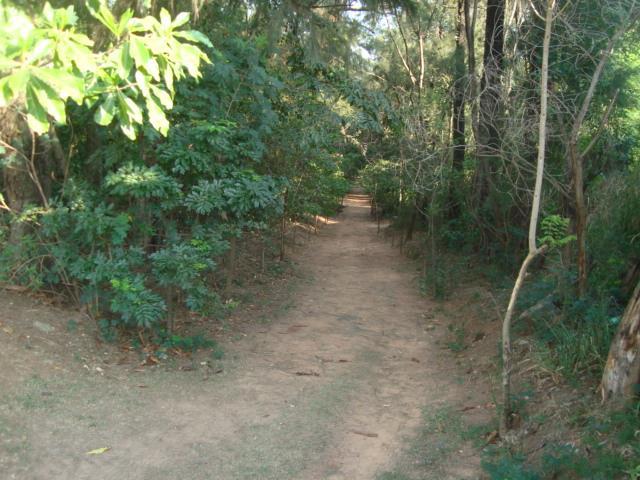 Terreno  Centro  Campinas