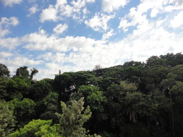 Apartamento de 1 dormitório à venda em Jardim Paraíso, Campinas - SP