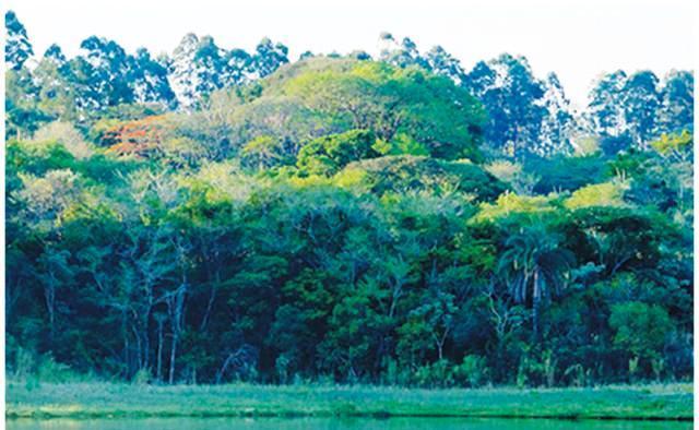 Terreno à venda em Estância Das Flores, Jaguariúna - SP