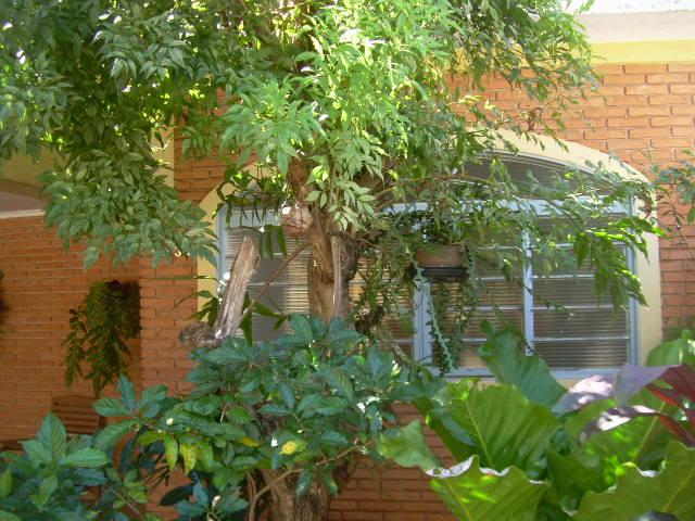 Casa residencial à venda, Parque dos Bandeirantes, Ribeirão ...
