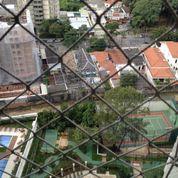 B - Palmeira - Foto 6