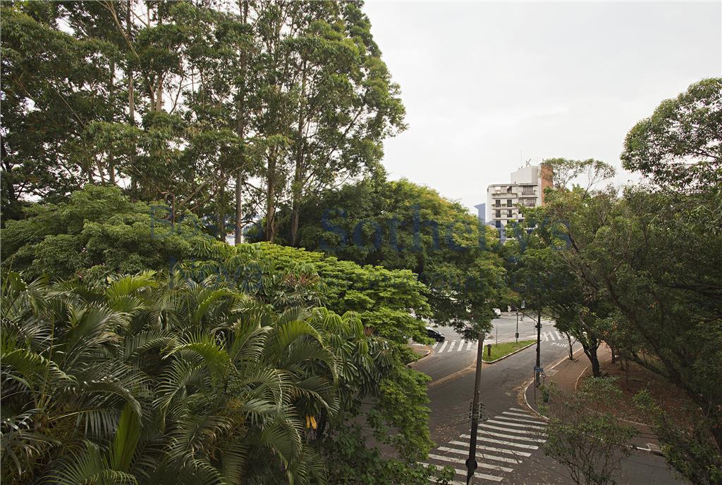 Vista para copa das árvores
