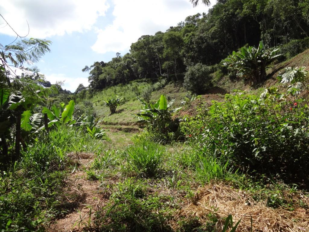 Terreno Residencial à venda em Pessegueiros, Teresópolis - RJ - Foto 3