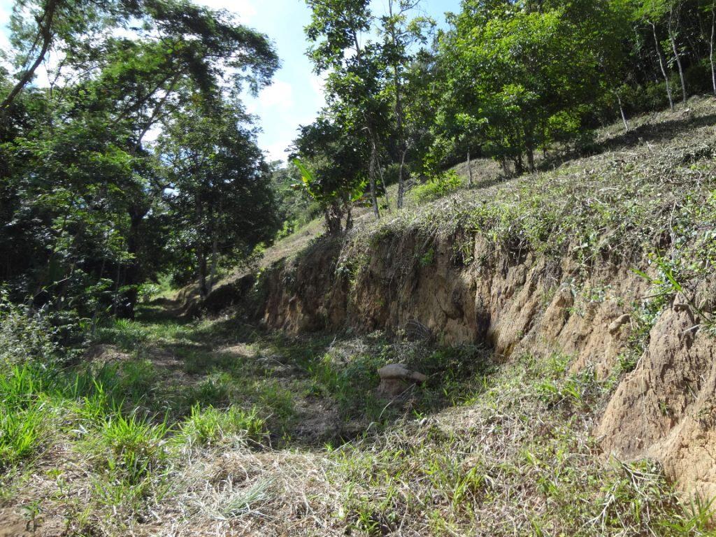 Terreno Residencial à venda em Pessegueiros, Teresópolis - RJ - Foto 5